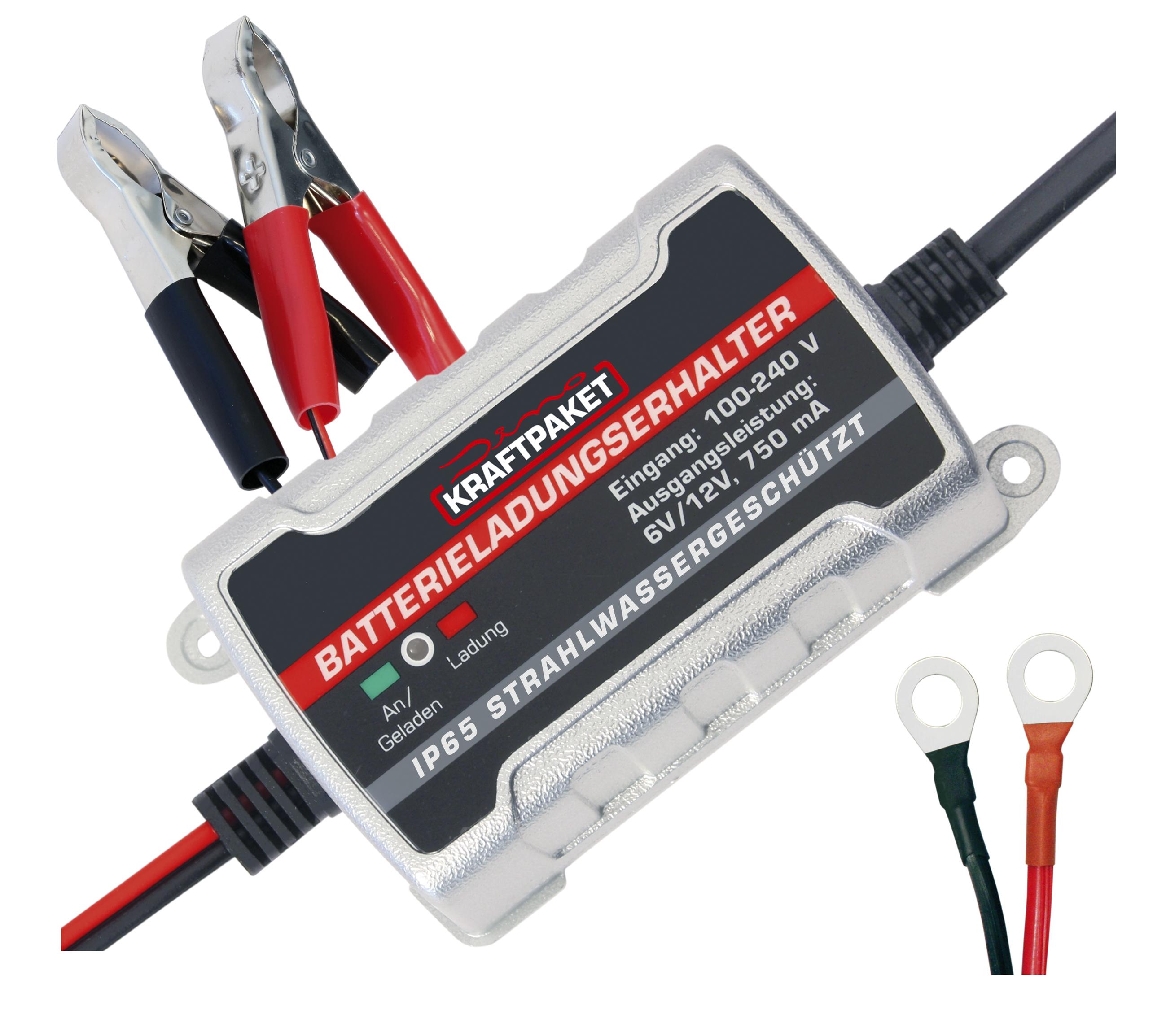 Dino Kraftpaket Batterie Erhaltungsgerät Batterieladungshalter 6V 12V 136303